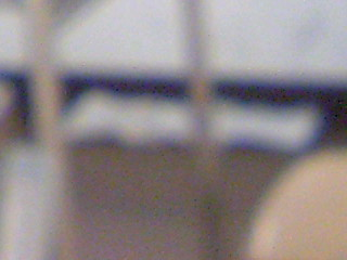 20071204174913.jpg