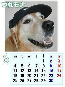 monakaカレンダー6-1