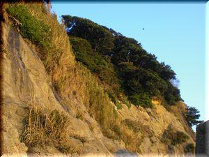 江ノ島反対側