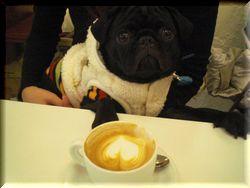 怪獣とカフェラテ