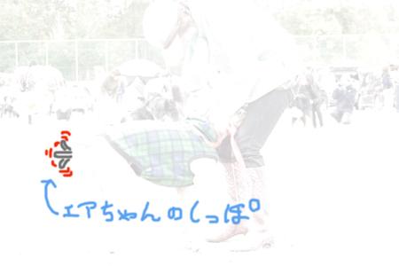 2008102803.jpg