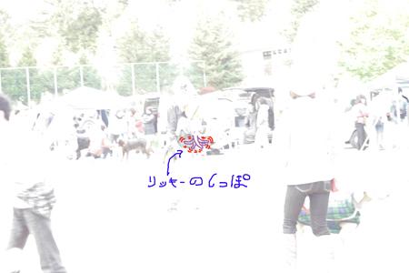 2008102816.jpg