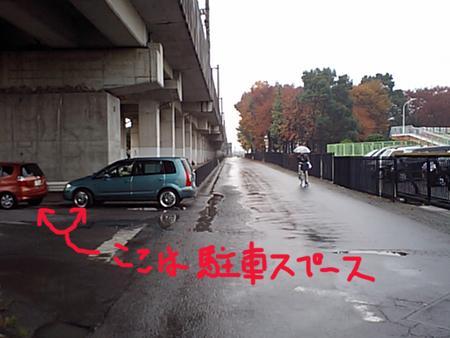 2008111608.jpg