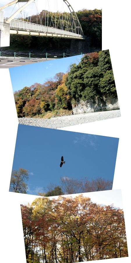 2008112400.jpg