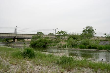 2009050302.jpg