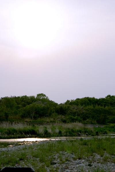 2009050320.jpg