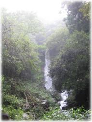養老の滝♪