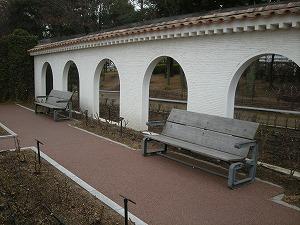 2009021903.jpg