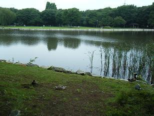 2008_0709takotako0023.jpg