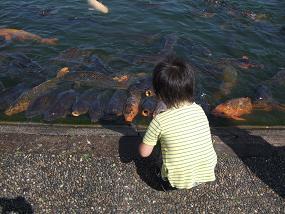 2009_0609takotako0032.jpg