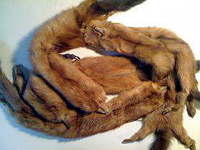 mink Fur Scarf1