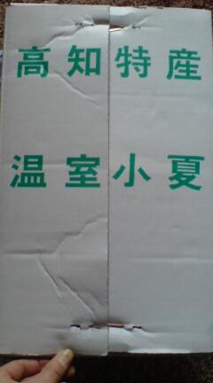 20090416115213.jpg