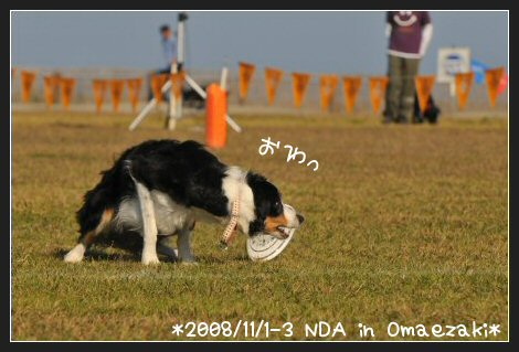 DSC_7538.jpg