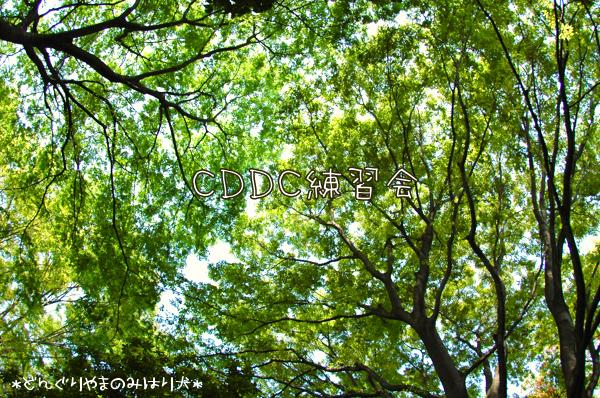 DSC_8606.jpg