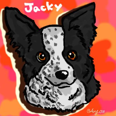 jacky.png