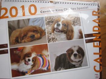2010キャバリアカレンダー