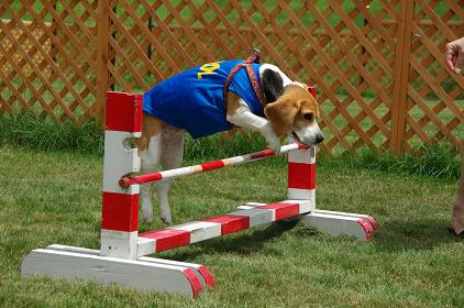 090719-15JAZZ jump