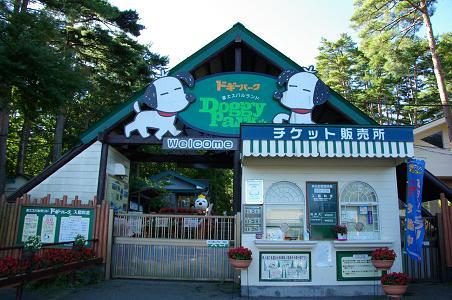 091011-02doggy park