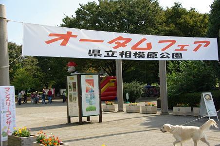 091012-01autum fair