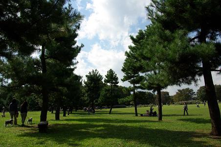 091012-05sagamihara park view