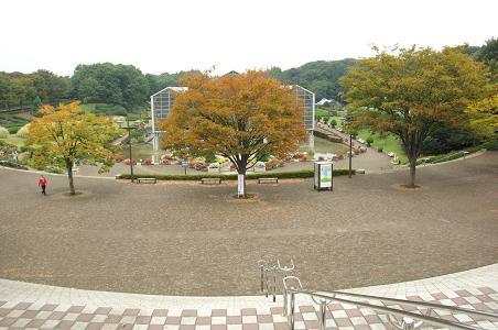 091017-05sagamihara park view