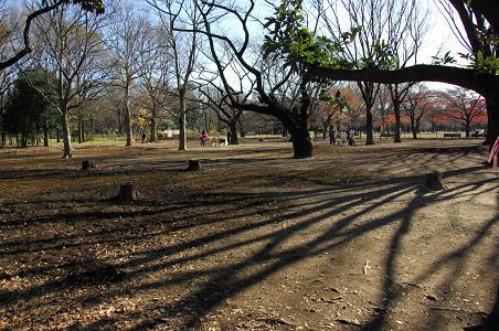 091219A15yoyogi park