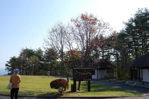 北山崎園地の風景