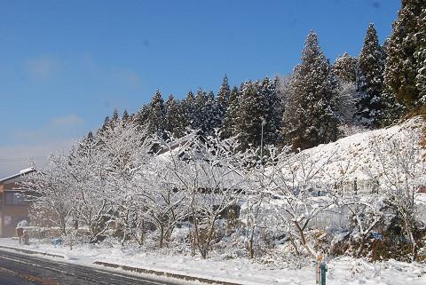お隣の雪景色