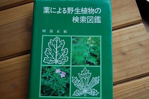 植物図鑑6