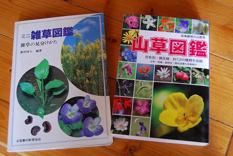 植物図鑑7