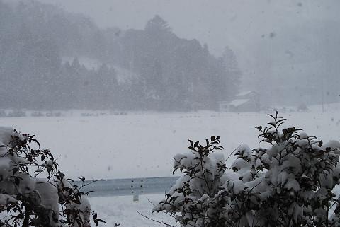 2日の雪3