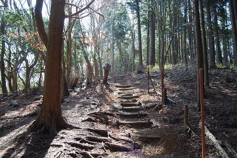 白髭神社への小道