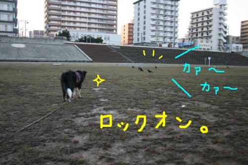 IMG_7427☆
