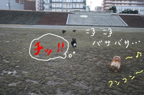 IMG_7429☆