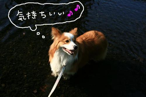 IMG_2464☆
