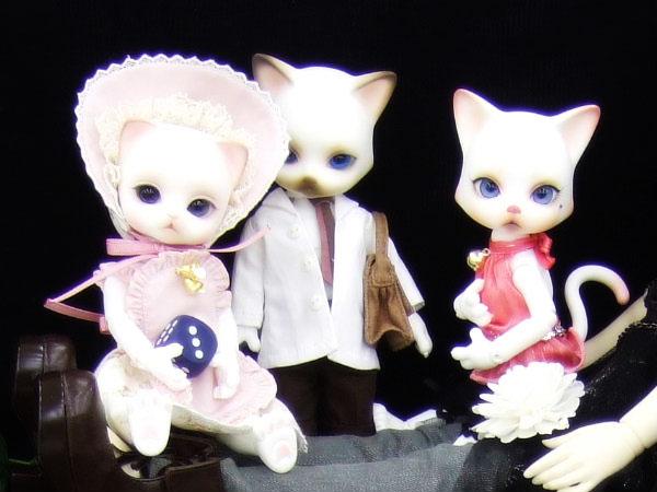 idoll22_04.jpg