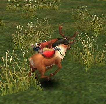 鹿の上で死ぬ