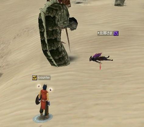砂漠005
