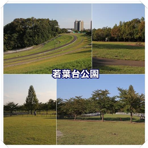 2011100702.jpg