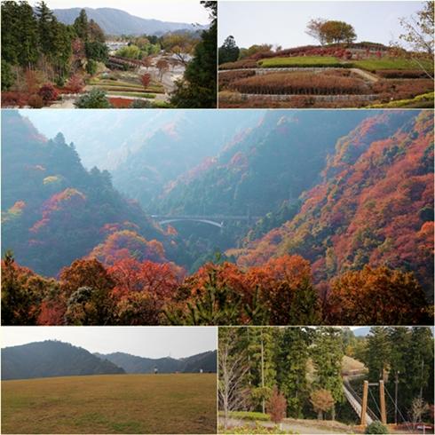 20111127aikawapark.jpg