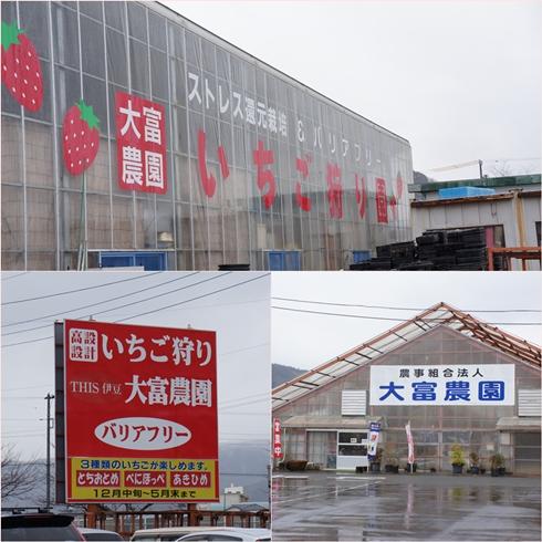 20120120ichigo2.jpg