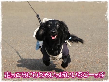 IMG_5538.jpg
