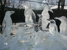 2008.2.10  氷の祭典