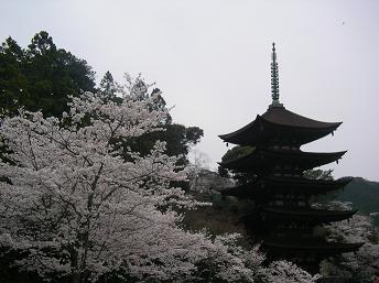 2008.4.5  山口瑠璃光寺五重塔