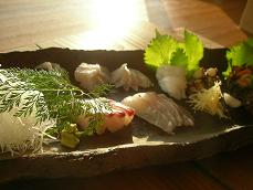2008.6.9 料理 お刺身