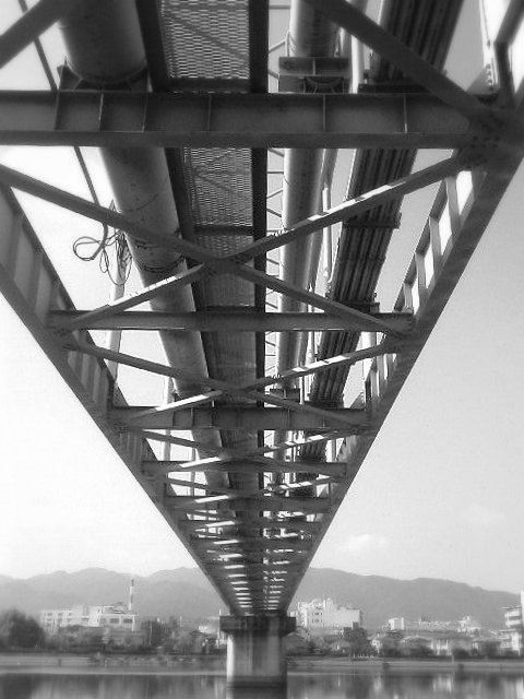 TS360154-1.jpg