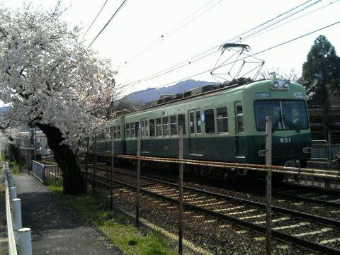 TS360650480.jpg
