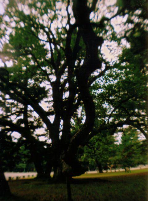 image0-66.jpg