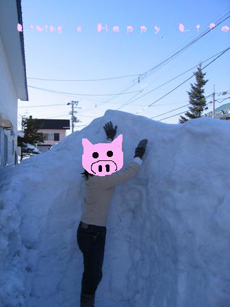 これ、全部屋根からの落雪です