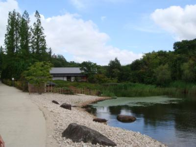日本庭園 1